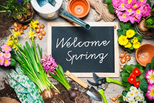Welcome to Spring!